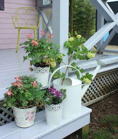 Romantic cottage garden / Engelse tuin: romantische cottage tuin - tuinieren.nl