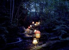 Dark forest, river, and glowing lamp shades