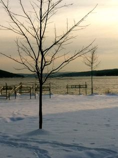 Winter Solitude on Keuka Lake my hometown Hammondsport NY River I, Finger Lakes, Lake Life, Winter Time, Solitude, Places Ive Been, Amen, Favorite Things, Scenery