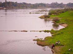 Die Oder auf polnischer Flussseite