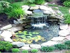 Do you need inspiration to make some DIY Backyard Ponds and Water Garden Landscaping Ideas in your Home? Water garden landscaping is a type of yard design which helps one to capture the essence of nature. Small Backyard Ponds, Backyard Water Feature, Large Backyard, Backyard Ideas, Backyard Designs, Rustic Backyard, Garden Ideas To Replace Grass, Garden Grass, Garden Beds