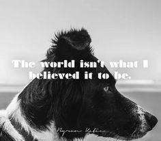 The world isn't what I believed it to be. - Byron Katie