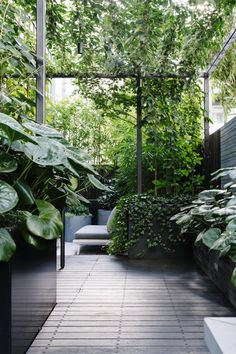 to create an inner-city terrace garden This inner-city terrace garden features a seating area enveloped by layers of lush greenery.This inner-city terrace garden features a seating area enveloped by layers of lush greenery. Small Gardens, Outdoor Gardens, Small City Garden, Indoor Gardening, Garden In House, Container Gardening, Gardening Tips, Balcony Gardening, Home And Garden