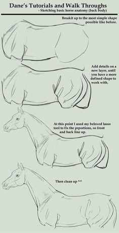 Tutorial de como dibujar un caballo