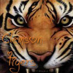 460 Best Clemson Tigers Images Clemson Tigers Clemson