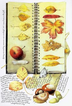 Marjolein Bastin Fall Leaves & Nuts