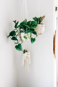 DIY Hanging Rope Planters - Style Me Pretty Living