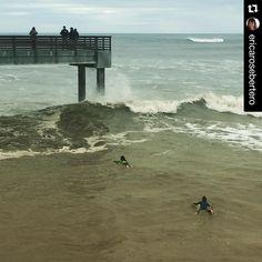 Paddling out for a show of skill.  #portaransastex #PortAransas #PortAransasTX #PortAransasTexas #Texas #MustangIsland #CorpusChristi #AransasPass #Rockport #PadreIsland #padreislandbeach #gulfcoast #thirdcoast #fishing #surfing  FOLLOW us for more of this beach-ness.  Find & follow @portaransastex Pinterest  Instagram  Twitter  Facebook  Repost @ericarosebertero  My view on this rainy and cold Sunday morning -- @bellasurfergirl6 and @surfer_shredder_girl paddling out for Junior Women…