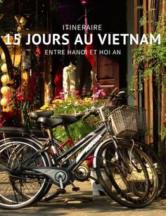 15 days in Vietnam: from Hanoi to Hoi An - Nall - - 15 jours au Vietnam : de Hanoi à Hoi An A Vietnam tour between Hanoi and Hoi An. We will stop in Cat Ba, Halong Bay, Ninh Binh and My Son. Vietnam Hotels, Vietnam Tours, Hanoi Vietnam, Vietnam Travel, Asia Travel, Hoi An, Trekking, Good Morning Vietnam, Vietnam Voyage