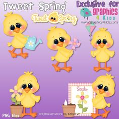 Tweet spring Digital Clipart - Clip art for scrapbooking, party invitations - Instant Download Clipart Commercial Use