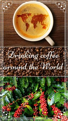The best coffee in the world? We've been to all main coffee countries and compared different ways of growing and making coffee.