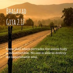 69 Best Hidden Secrets Of Humanity Bhagavad Gita Upanishads