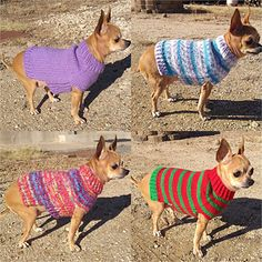 Simple dog sweater, easily adaptable to any size dog. Knit completely in the round except for bottom of back, which is knit back and forth after completion of the belly. Knitted Dog Sweater Pattern, Knit Dog Sweater, Small Dog Sweaters, Cat Sweaters, Crochet Dog Clothes, Pet Clothes, Knitting Patterns For Dogs, Dog Jumpers, Crochet Animals