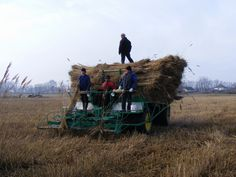 Harvester, 4x4