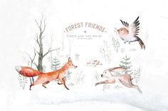 Ad: Scandinavian forest friends by Peace ART on This set of high quality hand painted Scandinavian forest animals. You will receive: - animals illustration (PNG, transparent Forrest Illustration, Graphic Illustration, Illustrations, Background For Photography, Photography Backgrounds, Forest Animals, Wild Animals, Peace Art, Forest Friends
