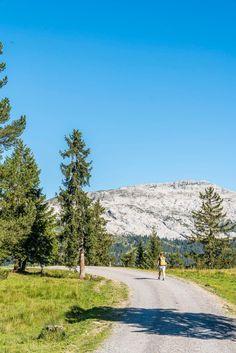 Entlebucher, Bad, Switzerland, Wonderland, Mountains, Nature, Travel, Snow Mountain, Families