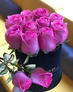 Beautiful Flowers Images, Beautiful Flowers Wallpapers, Flower Images, Beautiful Roses, Pretty Flowers, Flower Box Gift, Flower Boxes, Rose Arrangements, Beautiful Flower Arrangements