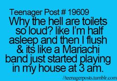 Yep. Once in vacay there was this big bathroom w like 10 stalls at the pool in the resort I flushed it the toilet made a huge fart noise and my mom thought I farted. Then we all laughed and would always use that one. We called it the farting toilet lmao