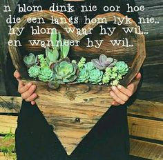 We have awsome DIY Indoor Succulents Plant Garden, check this out. In botany, succulent plants, also known as succulents or sometimes water storage plants, are plants that have some parts that are … Garden Cottage, Garden Art, Garden Plants, Indoor Plants, House Plants, Nature Plants, Fake Plants, Potted Plants, Cactus Plants