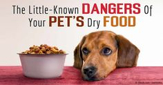 Dr. Danielle Conway has completed a pilot study that proves the presence of health-damaging compounds (advanced glycation end products) in processed pet food. http://healthypets.mercola.com/sites/healthypets/archive/2015/12/10/processed-pet-food-causes-disease.aspx
