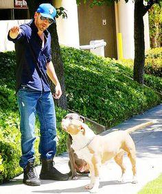 jon bernthal & his adorable dogs