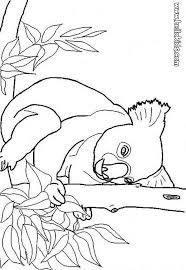 Koala Coloring Page Would You Like To Offer The Most Beautiful Your Friend Will Find Lots Of Them In AUSTRALIAN ANIMALS