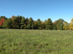 2.52 acre building lot ready to go with 4BR shared mound system installed by seller! Nice open meadow with ¾ acre building envelope, utilities at road! Convenient location, minutes to amenities.