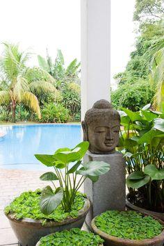 Detalhes do Céu: Buddha