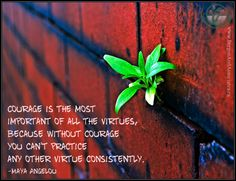 Courage is the most important of all the virtues, because without courage you can