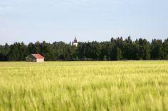 Kaukana siintää Jurvan kirkko.