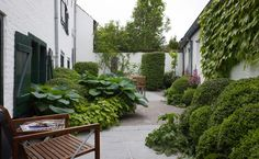 Great contrast between the white walls and deep green planting. Simple and a great effect.