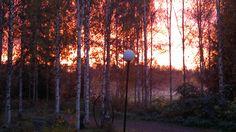 8.10.2014 kaunis aamu taivaan väreineen, mutta päivästä tuli sateinen...