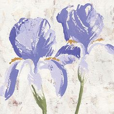 """Purple Glory II"" #Irises #Floral #Print by #NikitaCoulombe now available on #RoaringBrookArt"