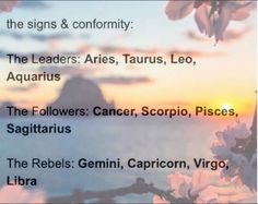 I'm usually a rebel or a I'll do whatever I want, not leader, I guess I can be a rebel leader who does whatever they want, because I'm the leader sooo #Aquarius