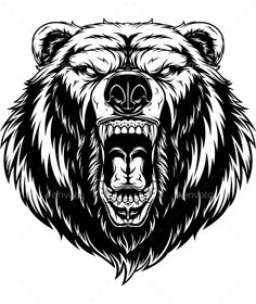 Head a ferocious grizzly bear vector Bear Vector, Dog Vector, Grizzly Bear Tattoos, Grizzly Bear Drawing, Grizzly Bears, Pirate Ship Tattoos, Angry Bear, Head Tattoos, Gun Tattoos