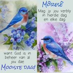 Good Morning Wishes, Good Morning Quotes, Lekker Dag, Goeie More, Christian Messages, Afrikaans, Friendship Quotes, Painting, Van