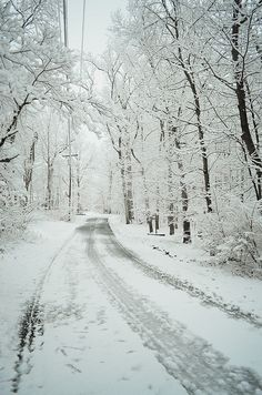 Perfect Winter Running Conditions