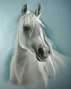 white horse 2 by linute34.deviantart.com on @DeviantArt
