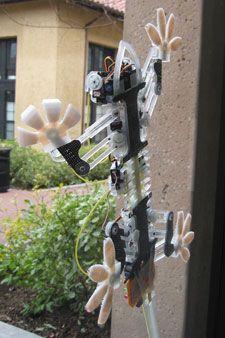 Wall-Climbing Robot Spies - IEEE Spectrum