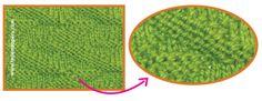 Cómo tejer el punto líneas cruzadas en dos agujas o palitos