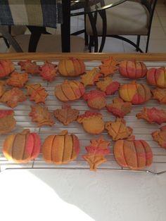 Fall Sugar Cookies 2012, pretty & yummy!!