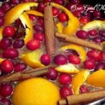 Scents of the Season...Simmering Stove Top Potpourri