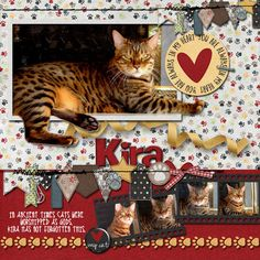 Credits  Love is a 4 legged word bundle by Created by Jill https://www.pickleberrypop.com/shop/product.php?productid=49110&cat=162&page=1