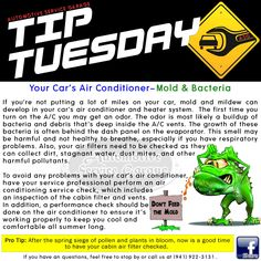 Car Care Tip: Mold & mildew can develop in your car's A/C and heater system.  An odor can be a buildup of bacteria and debris deep inside the A/C vents. Bacteria growth can be behind the dash panel on the evaporator. This smell may be harmful & not healthy to breathe, especially if you have respiratory problems. Also, check air filters because they can collect dirt, stagnant water, dust mites, & other pollutants. Auto Repair @ Automotive Service Garage Sarasota, FL…