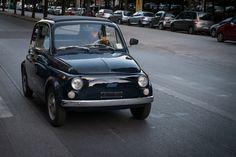 Fiat 500 in seinem Habitat von Migu Schwarz