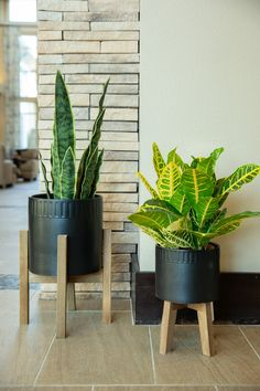 Indoor Planters, Ceramic Planters, Planter Pots, Patio Side Table, Hanger Stand, Terrace Garden, Terracotta Pots, Raised Garden Beds, Decoration