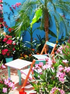 contemporary. infuse some color in the garden for tropical flair