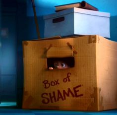 Box of Shame..... If only we could actually use one of these