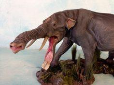 Platybelodon                                                                                                                                                                                 More