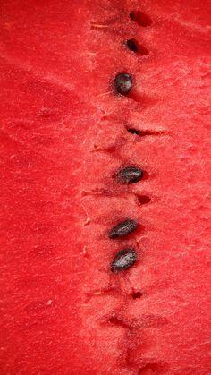 watermelon   Very co